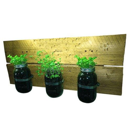 herb garden mason jar planter